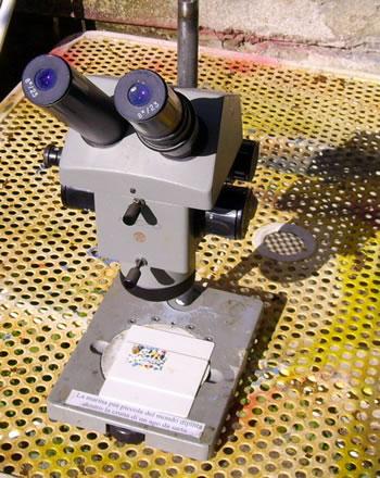 Lo stereoscopio
