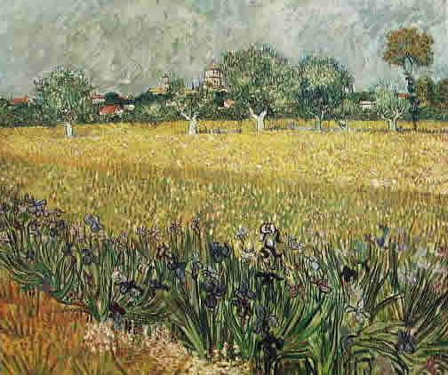 Vincent Van Gogh: campo con iris e veduta di Arles