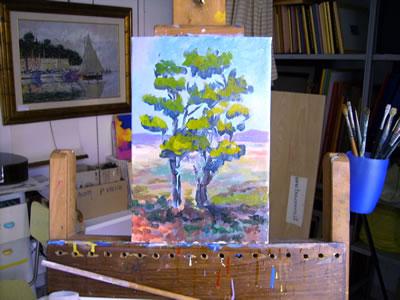 Figura n° 6: stesura dei chiari nell'albero