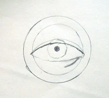 Il proseguimento del bulbo oculare