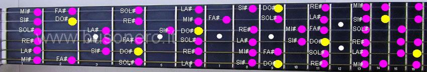 Tutte le note appartenenti alla scala di Do diesis Maggiore