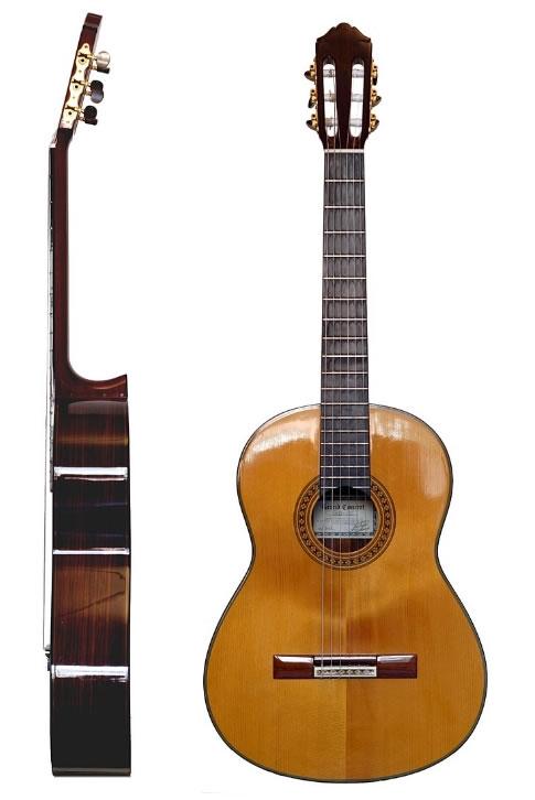 Differenza tra chitarra classica e acoustica yahoo dating